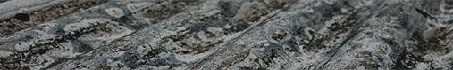 Toxic Tort & Asbestos